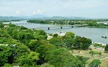 Huế dự kiến chặt hơn 3.800 cây tạp