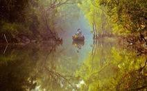 Thế giới đầm lầy, rừng ngập nước nguyên sơ tựa cõi mộng