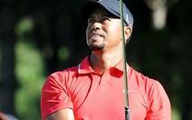 Vì sao Tiger Woods tuột dốc không phanh?