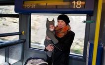 Na Uy là nơi tốt nhất để làm mẹ