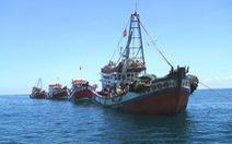 Tăng cường công tác giám sát đảm bảo an toàn tàu cá