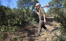 Bỏ 350.000 USD mua quyền giết tê giác để… bảo vệ tê giác
