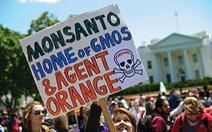 GMO và cuộc tranh luận chưa kết thúc