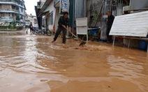 Đà Lạt vừa có mưa to, suối Cam Ly đã dâng thành lũ