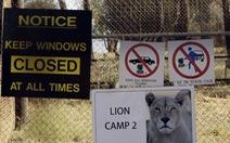 Sư tử cắn chết nữ du khách Mỹ