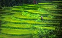 Bộ ảnh Việt Nam ngày nay tuyệt đẹp trong mắt du khách Mỹ