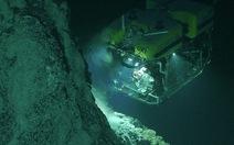 Phát hiện hàng nghìn sinh vật mới dưới đáy biển Caribe