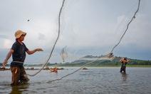 Bủa lưới trên hồ cạn