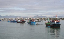 Quảng Nam sẵn sàng tiếp nhận dự án trung tâm nghề cá