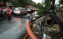 Mưa dông quét qua Hà Nội, 500 cây bật gốc, hai người chết