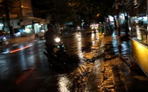 """Vùng đại hạn Ninh Thuận xuất hiện """"mưa vàng"""""""