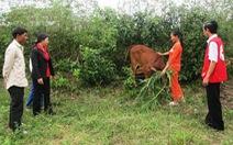 Tạo sinh kế bền vững cho đồng bào thiểu số ở Quảng Trị