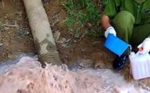 Xả nước thải ô nhiễm, hai doanh nghiệp bị phạt 625 triệu