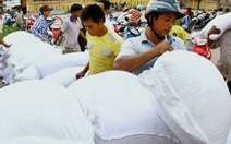 Hỗ trợ Đắk Lắk gần 500 tấn gạo