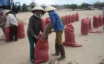Lập đoàn khảo sát doanh nghiệp xuất khẩu khoai mì lát