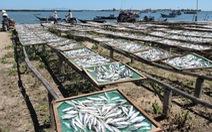 Về thăm làng chài hấp cá Thuận An