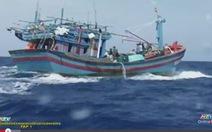 Phim tài liệu Biển đảo Việt Nam, Nguồn cội tự bao đời