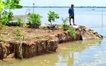 Hỗ trợ Đồng Tháp khắc phục sạt lở bờ sông Tiền