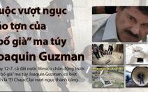 Infographic: Trùm ma túy Joaquin Guzman và vụ vượt ngục táo tợn
