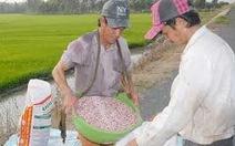 Xử lý triệt để kinh doanh vật tư nông nghiệp kém chất lượng