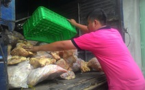 Phát hiện 5 tấn thịt gà quá đát chuẩn bị ra chợ
