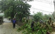 Quảng Ninh: Nhiều huyện, thị tan hoang sau mưa lớn