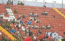 Vòng 19 Toyota V-League 2015: Khán giả Hải Phòng giận đội nhà