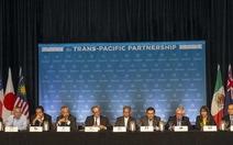 Việt Nam kết thúc đàm phán TPP với Hoa Kỳ và Nhật bản