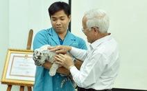 Nhân giống thành công hổ trắng: Thảo Cầm Viên Sài Gòn được khen thưởng