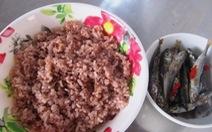 Nhớ cơm gạo đỏ núi rừng Phú Yên