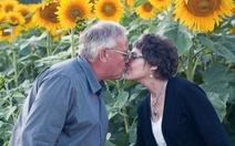 Chồng trồngcả cánh đồng hoa hướng dương tưởng nhớ vợ