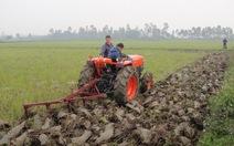 Tạo cơ chế tích tụ ruộng đất trong nông nghiệp