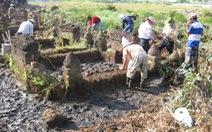 TP.HCM khai quật và bảo tồn mộ cổ