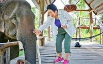 Nữ nhiếp ảnh gia Nhật Bản và tình yêu voi Tây nguyên
