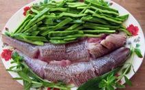 Thăm Quảng Ngãi thử món ngon từ cá thửng