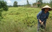 Bình Phước: 1.800 tỉ đồng xây dựngkhu công nghiệp