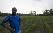 Ông mục sư trồng rau đểchăm sóc cộng đồng