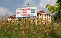 Cơ sở dạy nghề thành nơi... massage: Phải chấm dứt ngay