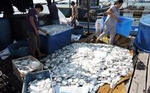 Vụ mang cá chết lên UBND tỉnh: Bồi thường cho ngư dân
