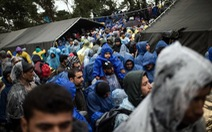 Croatia bất ngờ mở cửa biên giới với Serbia