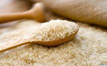 Nhiều đơn hàng xuất khẩu, giá lúa gạo tăng