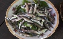 Lẩu cá linh mùa nước muộn