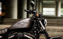 Dàn xe Harley-Davidson 2016 trình làng các mẫu mới