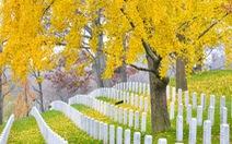 Ngoạn cảnh 12... nghĩa trang đẹp nhất thế giới