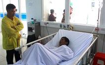 Ngộ độc do ăn cá nóc, 8 người nhập viện cấp cứu