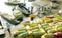 20.000 USD cho một giấy phép xuất khẩu gạo?