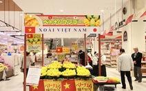 Xoài Cát Chu chính thức được bày bán tại thị trường Nhật Bản