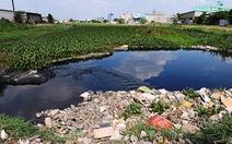 Hơn 200 km sông, kênh, rạch Sài Gòn bị lục bình tấn công