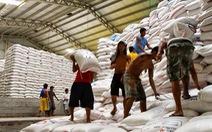 Giá lúa gạo tiếp tục xu hướng tăng