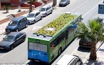 Thụy Điển muốn cung cấp xe buýt sạch cho Việt Nam